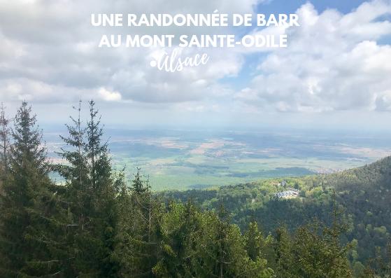 randonnee de barr au mont sainte odile blog madame voyage